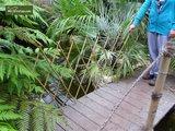 Harmonica bamboo 90 x 180 cm_