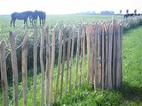 Chestnut fence rails 8cm 80x 460cm_