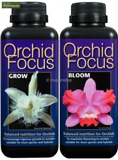 Orchid Focus Bloom + Growth 1000 ml