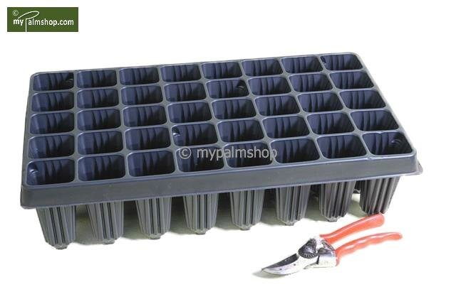 Tray for Palm seedlings 28-holes