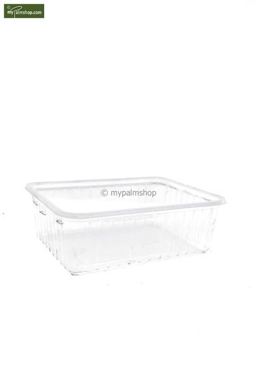 Seed germination boxes