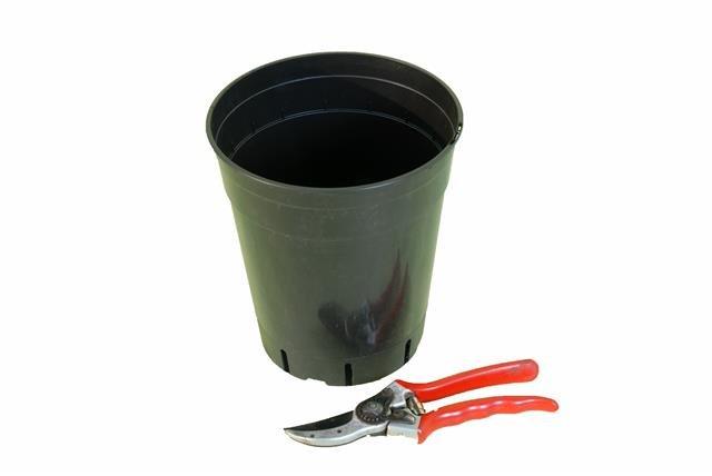 Deep palm pot round 4.0 litre