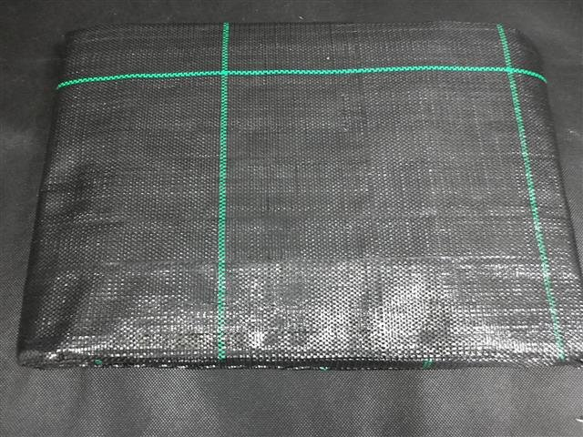 Anti-weed sheet 1 x 10 Mtr