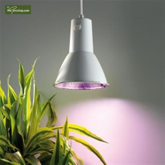 Energy saving lamp L15
