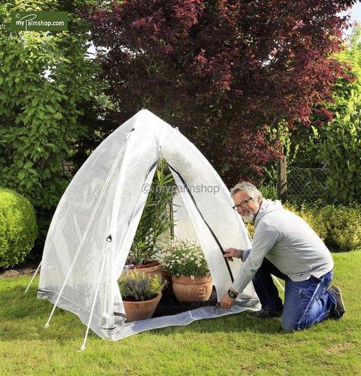 Wintering tent Tropical Island Type M