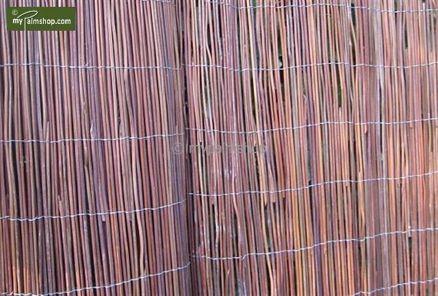 Black Fern Fence 200cm x 300cm [pallet]