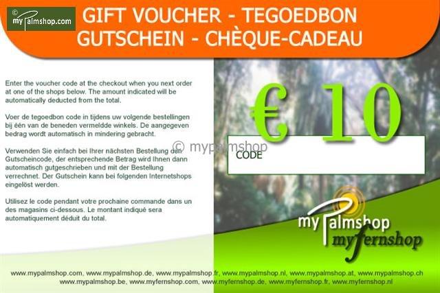 Gift voucher €10,-