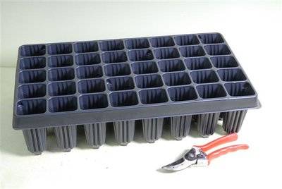 Tray for Palm seedlings 40-holes