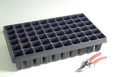Tray for Palm seedlings 60-holes