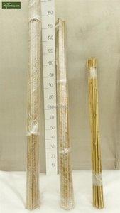 25 x Bamboo Plant Stake -Tonkin 120cm