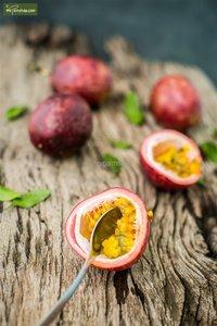 Passiflora edulis 2 ltr