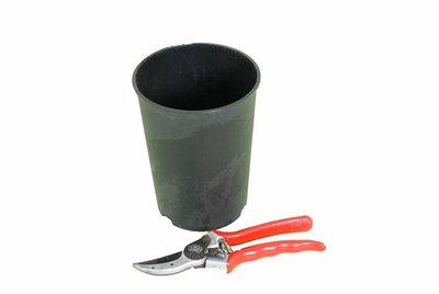 Deep palm pot round 2.0 litre