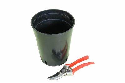 Deep palm pot round 7.0 litre