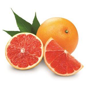 Citrus paradisi - trunk 30-40 cm - total height 80-100 cm - Topf Ø 24 cm